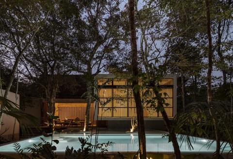 Jungle Keva 叢林凱瓦
