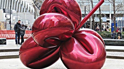 Balloon Flower (Red)
