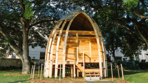 Architecture grad makes affordable prefab homes from Hawaii's invasive trees 建築學畢業生用夏威夷的入侵樹木建造經濟實惠的預製房屋