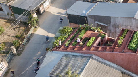 TAA Design tops red house in Vietnam with a stepped vegetable garden|TAA Design在越南紅房子上擁有階梯式菜園