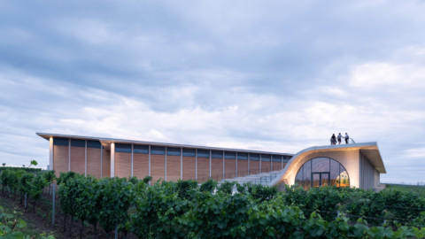 Lahofer Winery|CHYBIK + KRISTOF