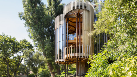 Tree House |Malan Vorster Architecture Interior Design