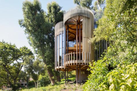 Tree House |Malan Vorster Architecture Interior Design