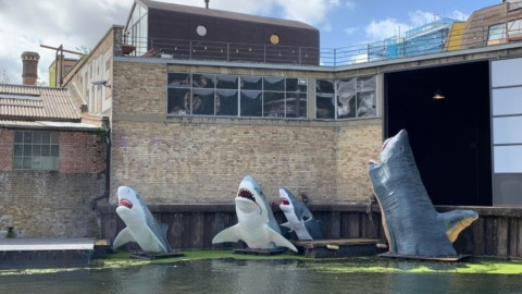 "Antepavilion juror attacks pathetic council for blocking Sharks! installation with court injunction Antepavilion陪審員攻擊""可悲的""議會以阻止鯊魚! 法院禁令安裝"