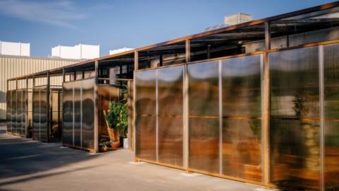 Tinted polycarbonate blurs cactus inside Santa Monica Greenhouse by Part Office|有色聚碳酸酯會使聖莫尼卡溫室內部的仙人掌模糊不清