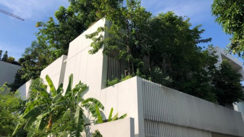 Shma Company designs Bangkok home for family and forest of 120 trees|Shma Company為曼谷的家庭和森林設計了120棵樹木的家