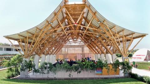 Bamboo Auditorium   Instituto de Vivienda, Urbanismo y Construcción de la USMP