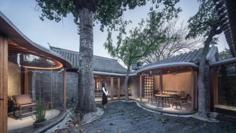 Curving glass walls bulge into courtyards of converted Beijing hutong|彎曲的玻璃牆向改造後的北京胡同的院子隆起